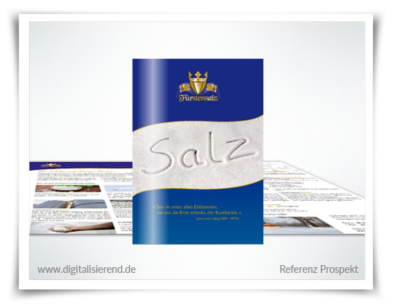 Broschüre, Gestaltung, Referenz, Fürstensalz, Salz Großhändler, digitalisierend, Dirk Neumann, Hallo AD